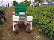 Robotics project set to develop autonomous systems for soft fruit sector