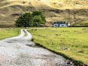 Slow-down in bank lending to Scottish agriculture over past year