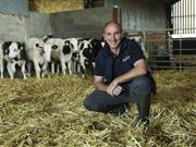 Farm study reveals potential solution to reducing antibiotic use in cattle