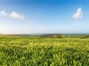Tax breaks on farmland should avoid Budget chop, NFU Mutual says