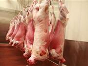 Sheep industry step closer to mandatory sheep carcase classification