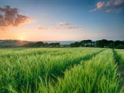 Two arable farms needed to join 'Strategic Farm' initiative