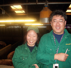 Japanese visit Yorkshire pig-breeding company