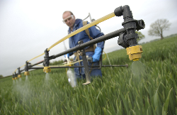 New fungicide being developed to meet the needs of UK cereal growers