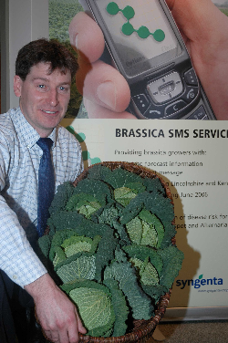 Brassica growers to get advance warning of disease