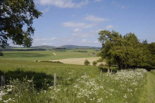 Projects to safeguard UK countryside receive new funding