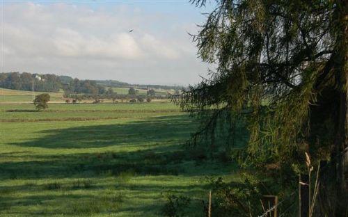 Nature Improvement Areas must not stifle development