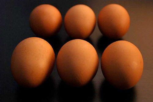 LOCOG underlines importance of British eggs
