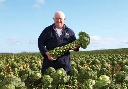 Morrisons to highlight provenance of Scottish food