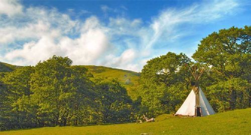 Welsh egg producer serves up 'Glamping' prize