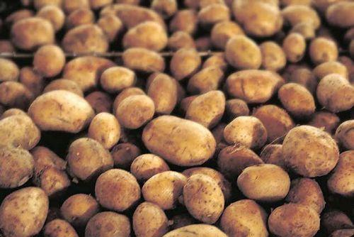 Market briefs highlight opportunities for potatoes