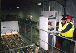 Optical sorting a 'win win' for potatoes