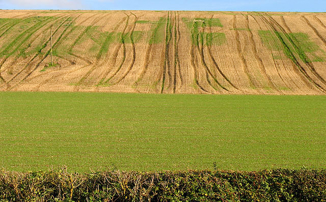 Defra outlines future of pesticides with draft plan