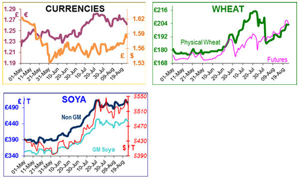 Bad wheat harvest for Russia; US focus moves to soya