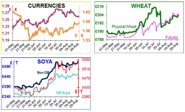 Humphrey Feeds Commodity Report - 2nd September 2012