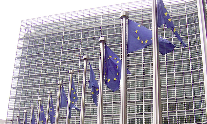 EU is too big for CAP says MEP