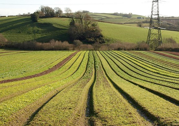 Uk Must Unlock Agricultural Science Potential Says Mp