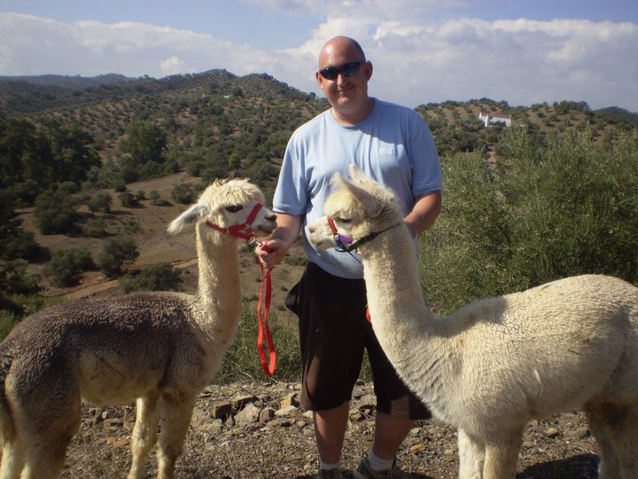 Expat life: Alpacas in Spain