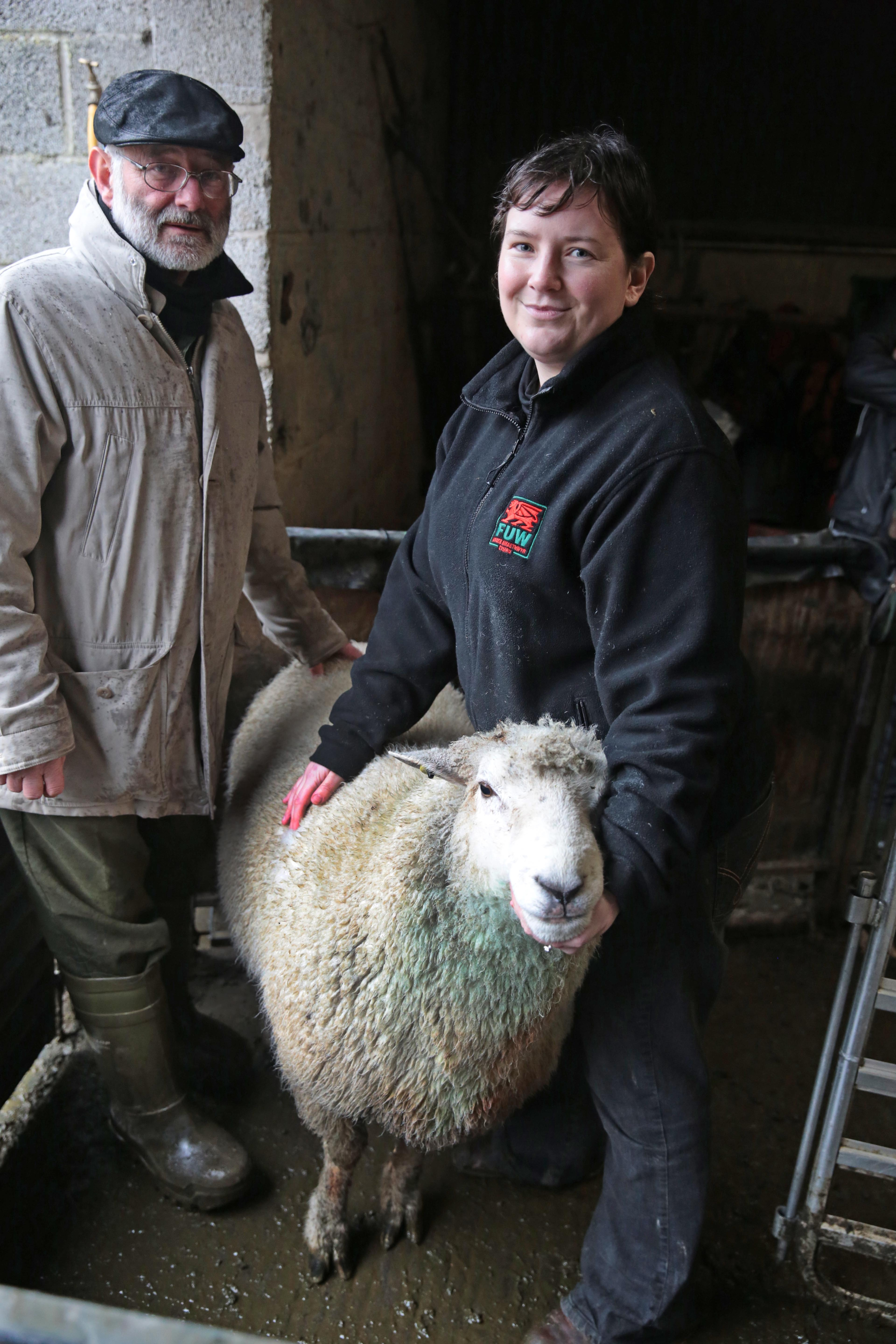 Catherine Nakielny and her father Edward with a high index performance recorded ram being evaluated on-farm.