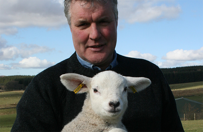 Wool board members re-elected for three years