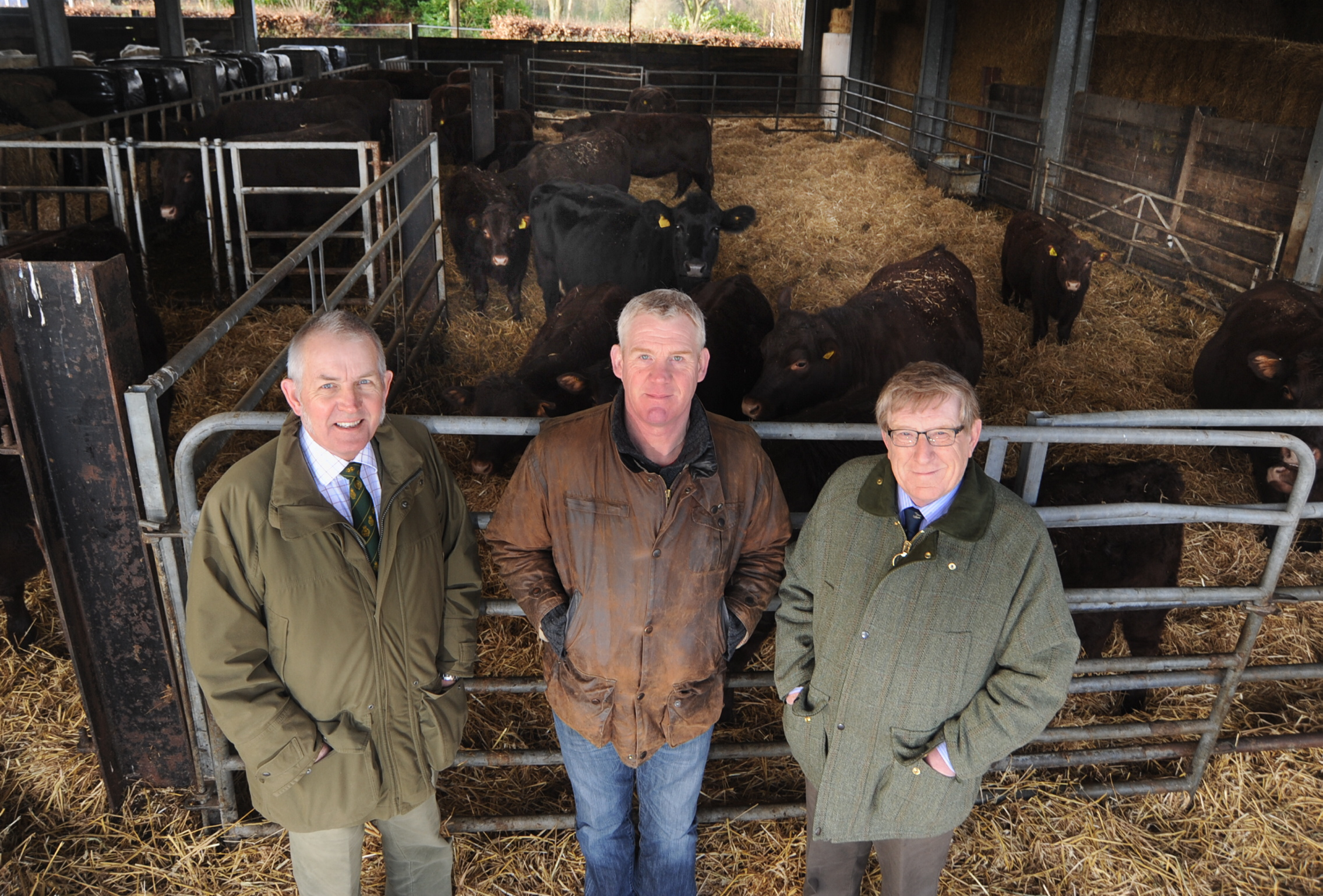 left to right - Gordon Gatward, Charlie Weetman and Richard Fonge from the Kenilworth Show organising committee