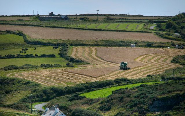 Figures reveal steadying farm costs