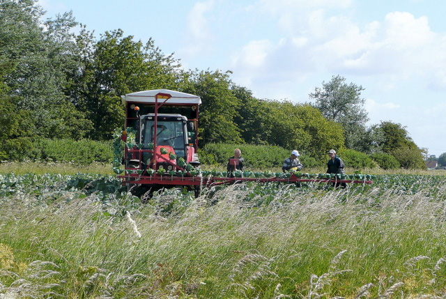 Lack of urgency in cutting farm regulations - NFU