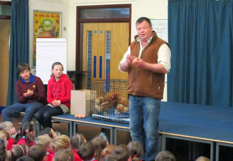 Free range egg farmer Doug Wanstall introduces Wingham Primary Schools students to the birds