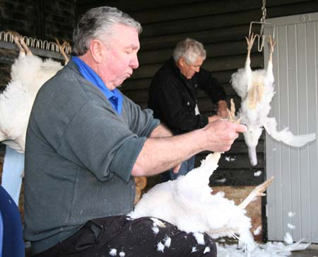 Vincent Pilkington [right] with Paul Kelly busy plucking the turkeys