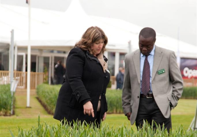New varieties on parade at Cereals 2014
