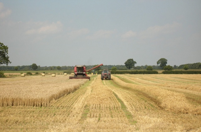 Tax break to support agricultural business growth