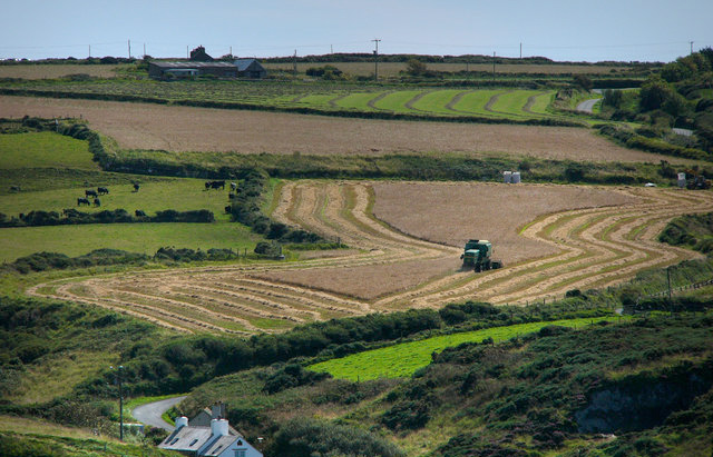 How can the next UK government boost agricultural production?