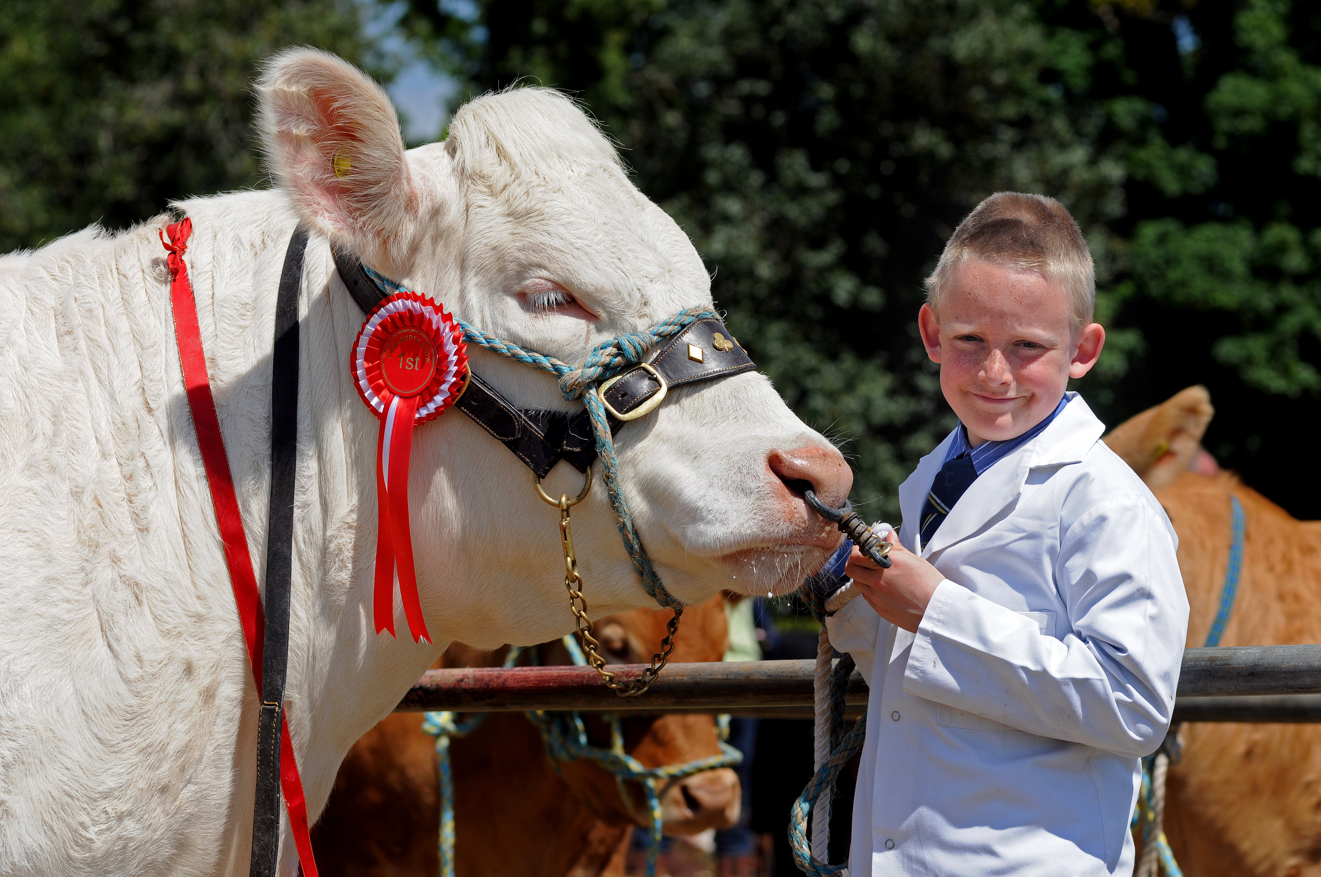 The Kenilworth Show takes place on June 7
