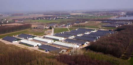 Herveld pedigree farm