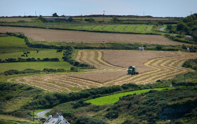 'Farm tax' could mean an end to farming as we know it, says CLA