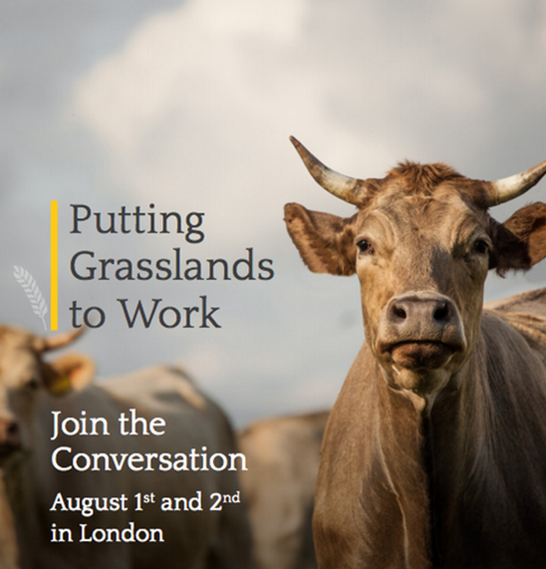 Putting Grasslands to Work: Join the Conversation