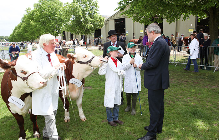 Record cattle entries at Royal Three Counties Show