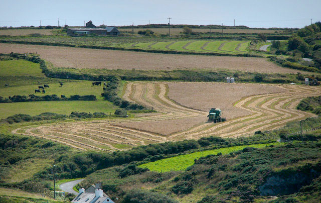 Agricultural accountants hit out at 'farm tax'