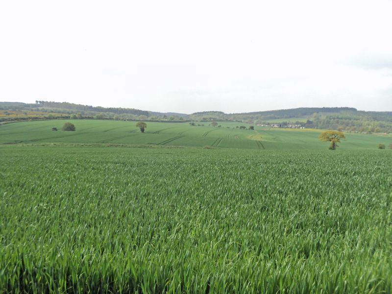 Arable farm bordering Cannock Chase seeks offers in excess of £1.3 million