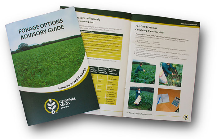 New guide from Germinal Seeds provides advice on forage options