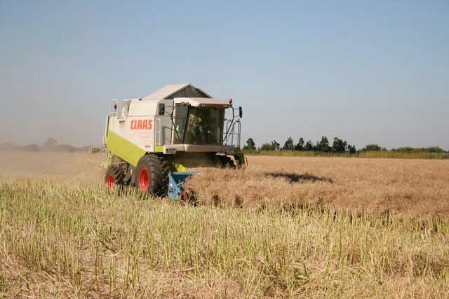 Combine harvester sales drop significantly