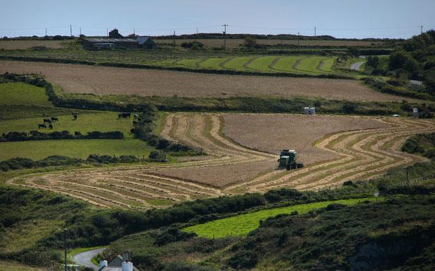 Upward forecast for UK farmland this year