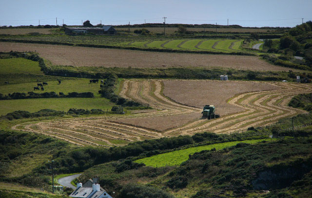 Farmers 'optimistic for future growth' despite falling prices