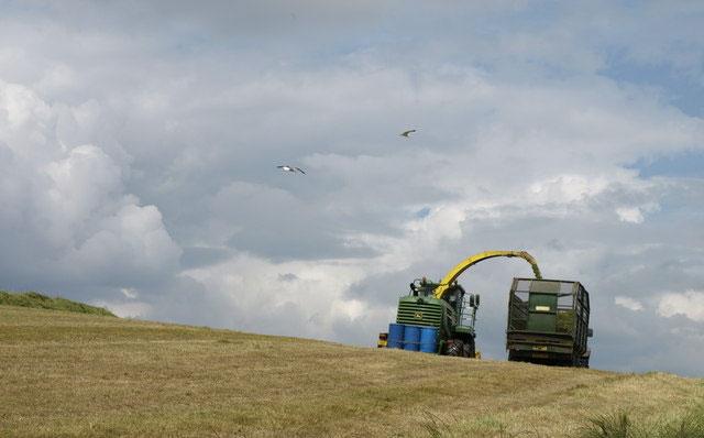 New partnership aims to reduce farm deaths