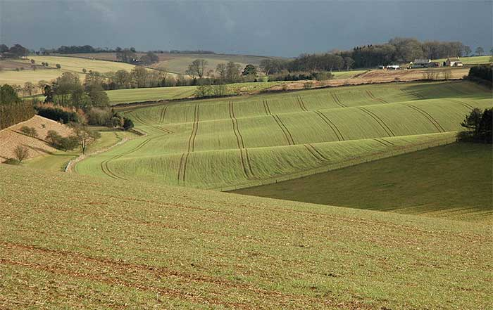 Demand for arable land driving up farmland prices