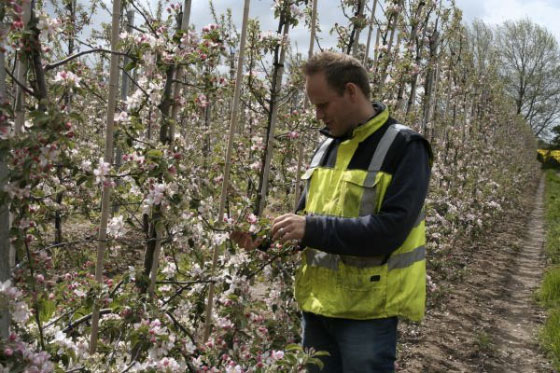 Farming growth plan needed for UK self-sufficiency