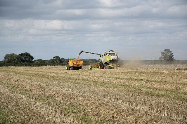 Farm incomes fall by 30%, new figures sh...