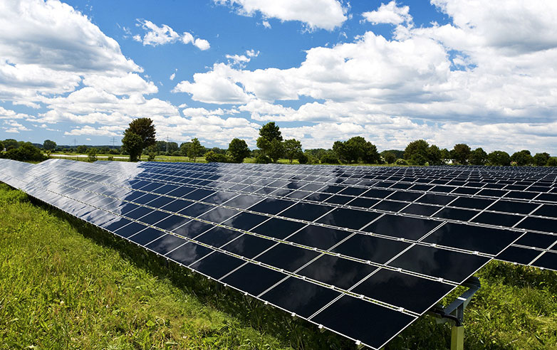 Combining solar and livestock farming: New guidance published