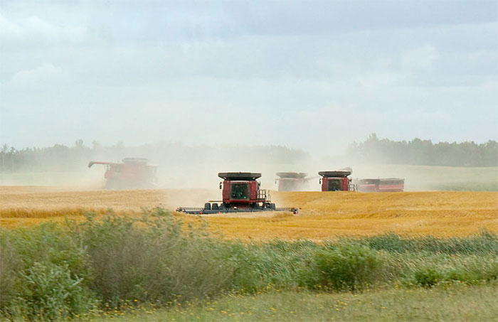 Financial pressures growing on farmers