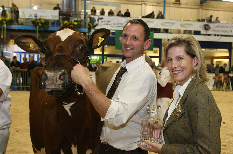 Dairy Show 'boasts genetics of the futur...